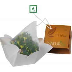 Naturtè - Cubetto Infuso con filtro in seta 5 pz